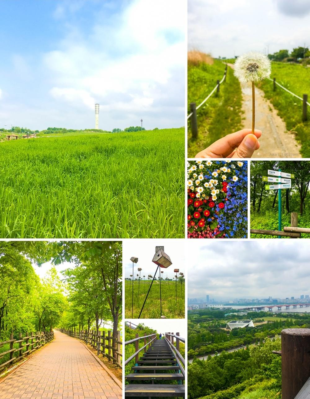 haneul park seoul