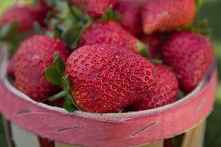 strawberry tree uses