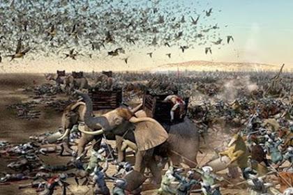 """""""Burung Ababil"""" Insya Allah Selamatkan Negeri ini! Mari Baca Surat Al-Fiil..."""