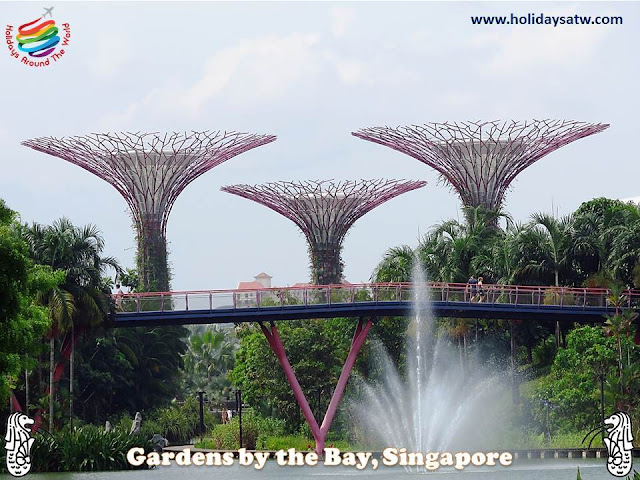 The best activities in Gardens by the Bay