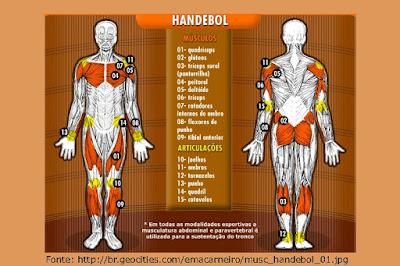 handebol, breve resumo do handebol, músculos solicitados no handebol, história do handebol, regras do handebol