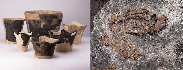 Ancient DNA rewrites early Japanese history—modern day populations have tripartite genetic origin