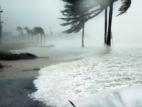 Protecting Your Home in a Hurricane
