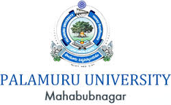 Palamuru University Degree Exam Time Table 2020