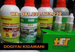 Jual SOC HCS, KINGMASTER, BIOPOWER Siap Kirim Dogiyai Kigamani