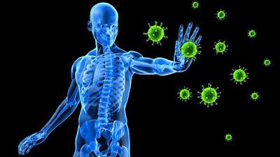 K4KUMAR Boosting-Your-Immune-System