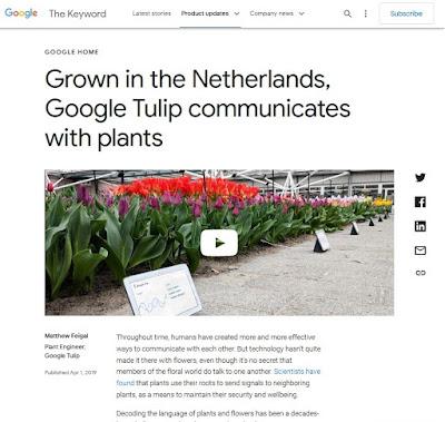 Poisson d'Avril 2019 - Google Tulip