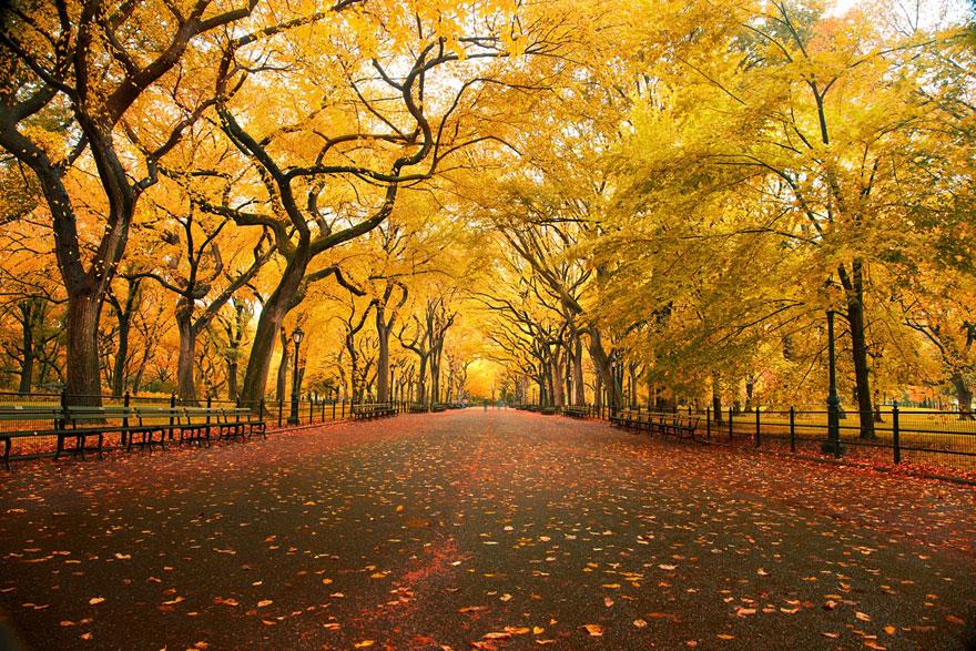 autumn-photography-8