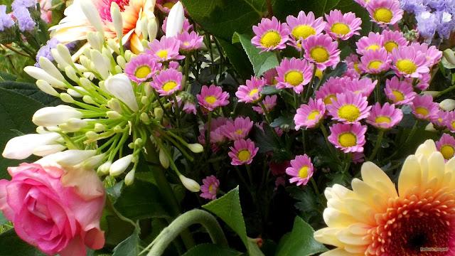 Boeket met lente bloemen
