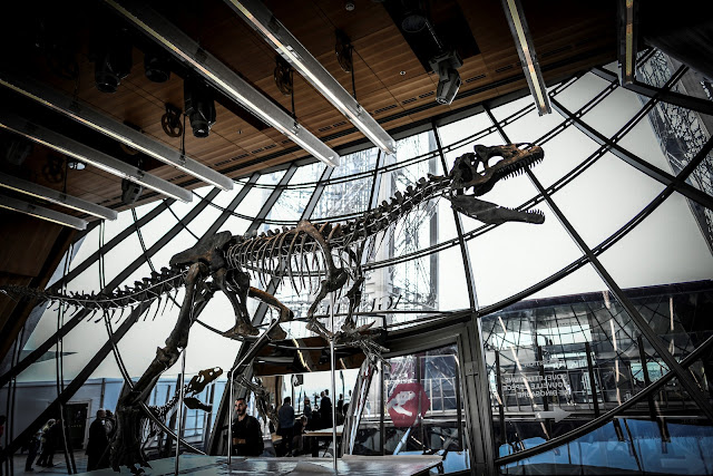 Em leilão, esqueleto de dinossauro carnívoro é vendido por 2,3 milhões em Paris