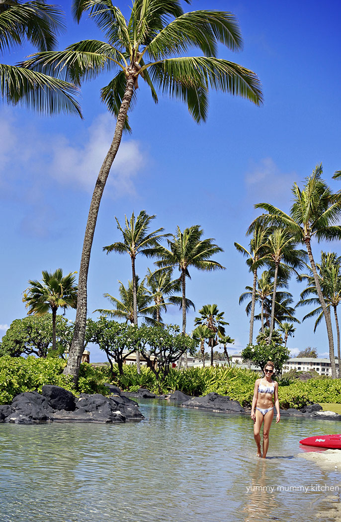 princeville single girls 3d rose lsp_207888_1 hawaii-tropical coastline of princeville-single toggle switch - - amazoncom.