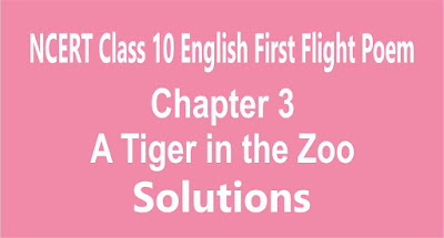 Chapter 3 A Tiger in the Zoo