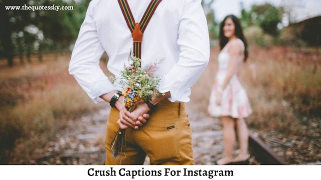 261+ Crush Captions For Instagram [ 2021 ] Also Catchy Crush Quotes