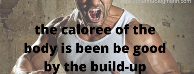 bodybuilder status