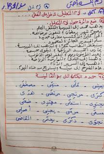 مراجعة لغة عربية الصف الثالث الابتدائي الترم الاول