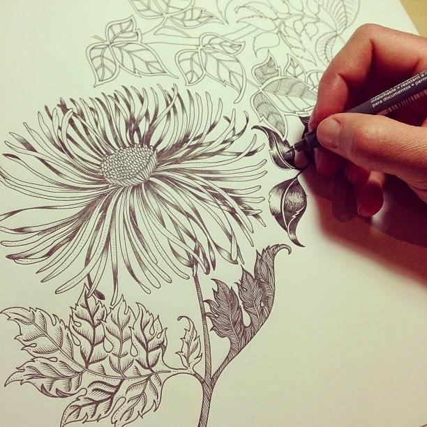 De jardines secretos y bosques. Libros para colorear