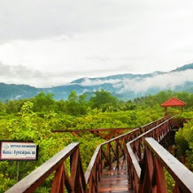 Jembatan Galau ?  Destinasi Wisata nan Unik Yang Wajib Kamu Kunjungi