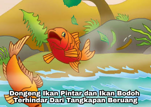 Dongeng Ikan Pintar dan Ikan Bodoh – Dimangsa Beruang
