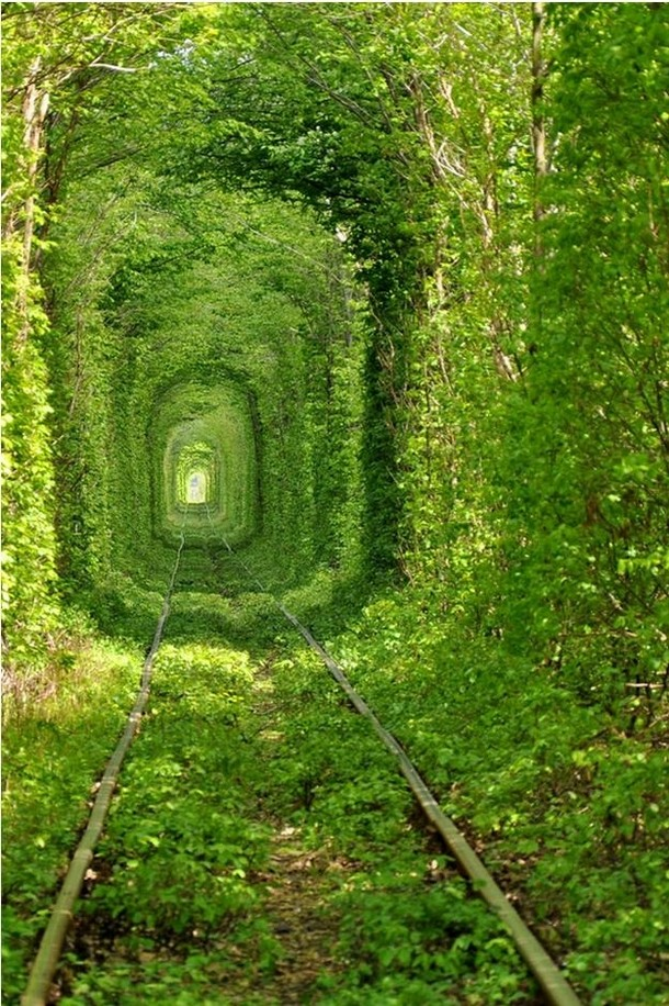 The Tunnel of Love in Klevan, Ukraine