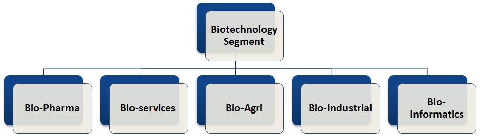 Segments of Biotechnology Industry in India