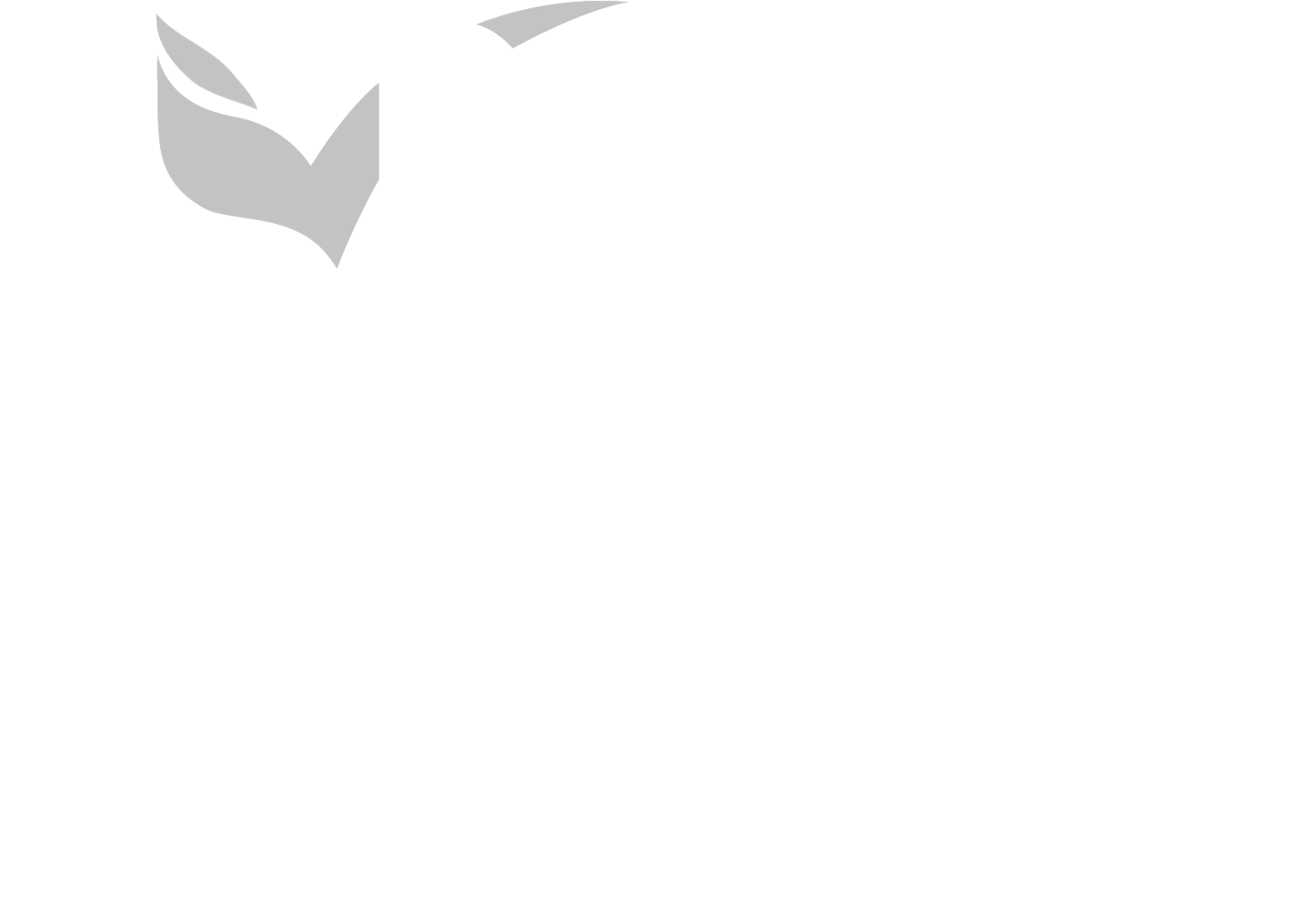 JBA MICE
