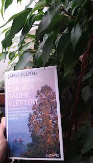 das Buch vor einem Ficus
