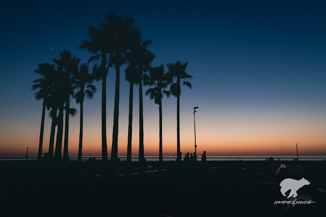 Venus showed up. Venice Beach, CA.