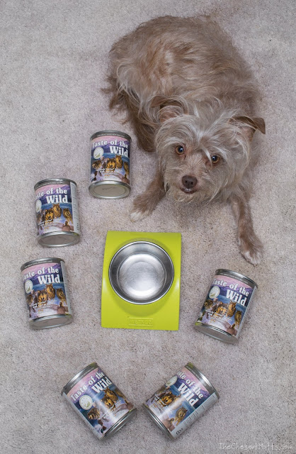 Mini Review: Taste of the Wild Canned Dog Food