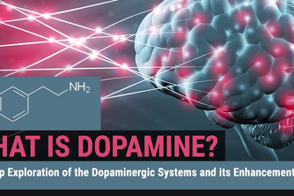 What is Dopamine and what is its function?