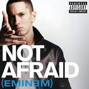 MP3: Eminem - Not Afraid