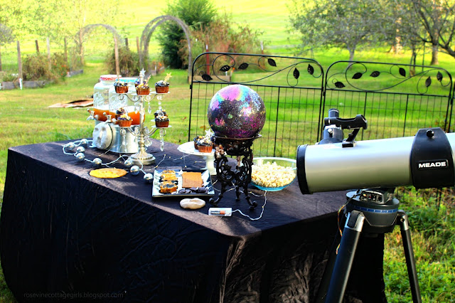 Under the stars, astronomy, star party, birthday party,