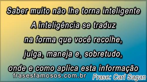 A inteligência se traduz na forma que você recolhe, julga, maneja e, sobretudo, onde e como aplica esta informaçã