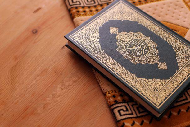 Halaman 331 MP3 Murottal Per Halaman Al-Quran Teks dan Terjemah Download Gratis