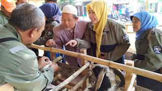 Sidak Hewan Kurban, DP2KP Kota Cirebon Temukan Hewan Tidak Layak Jual