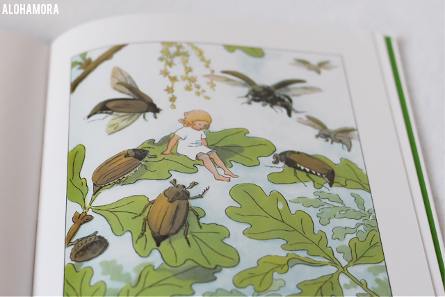 Thumbelina by Hans Christian Andersen and illustrated by Elsa Beskow gets 4 out of 5 stars in my book review of this classic fairytale.  Beautiful pictures from this Swedish illustrator. Alohamora Open a Book www.alohamoraopenabook.blogspot.com picture book, 4th-3rd grade