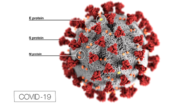 Coronavirus-Covid