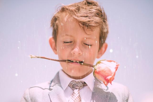 chłopiec, róża, elegancik
