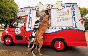 caminhão de sorvete para cães