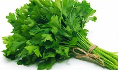 Manfaat daun seledri dan untuk cuci ginjal