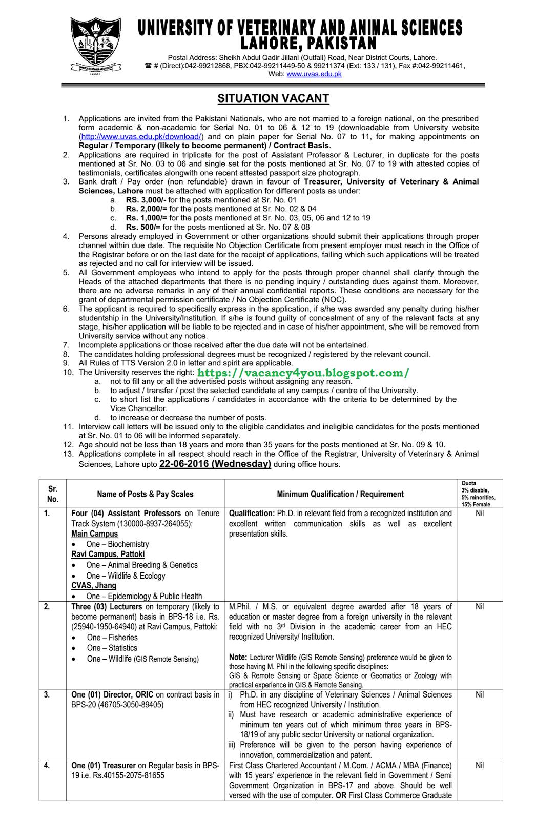 LATEST JOBS: Multiple Veterinary Jobs in UVAS, LAMP and Pattoki Farm