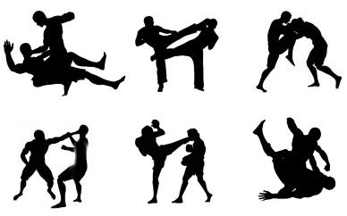 FILSHU HAPKIDO SANTA CATARINA: Artes Marciais e Saúde