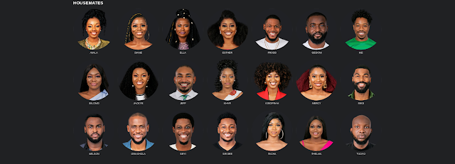 BBNaija 2019 Biography of All 21 Housemates