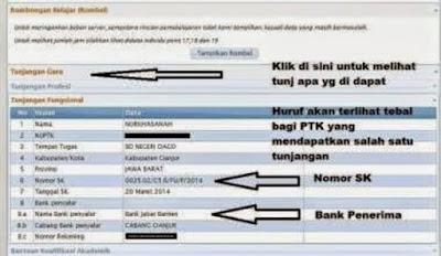 Cek SK Tunjangan Fungsional Guru Non PNS 2016