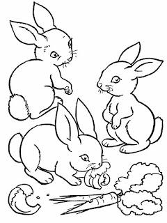 Printable Of Bunny Rabbit Coloring Sheet Ideas