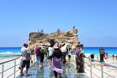 استقبال السائحين الوافدين بجنوب سيناء والبحر الأحمر ومطروح