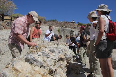 Μυτιλήνη: Αυτοψία του Τομέα Γεωεπιστημών της UNESCO στο έργο συντήρησης απολιθωμάτων στο Απολιθωμένο Δάσος Λέσβου