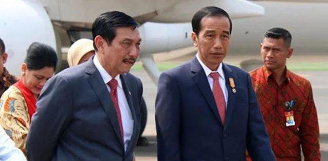 Perintah Jokowi Kepada Luhut Tanda Presiden Putus Asa Hadapi Covid-19