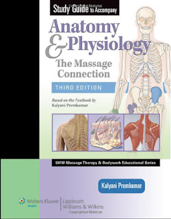 Anatomy & Physiology – The Massage Connection 3rd Edition