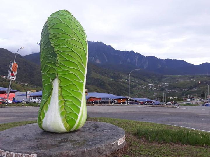 tips bercuti ke Kundasang, Sabah