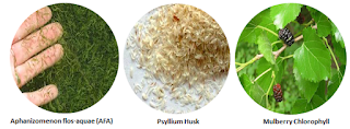 Bahan herbal StimFibre HPAI - www.infojagakesehatan.com - isman